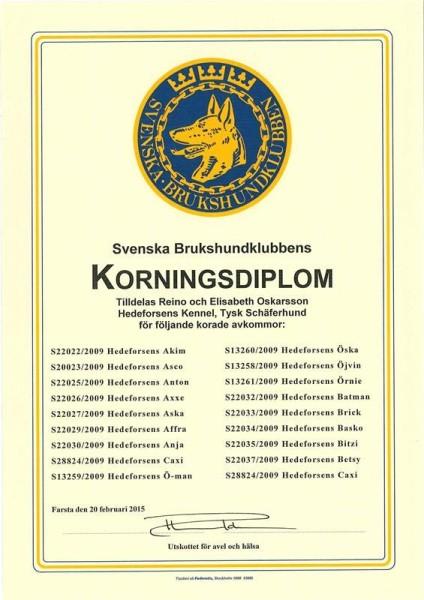 8f2440f1-6a25-4734-8c6a-ffaa6bc91b0d4