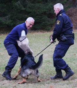 """Ander och Qurre tar hand om en """"buse"""""""