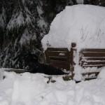En snödold Irax